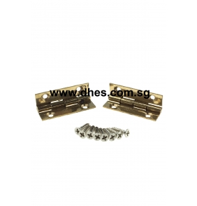 Everest Brass Hinges (Pair)